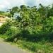 Limpeza de terrenos no Bairro Marimbeiro